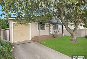809 Pacific Highway, Belmont South, NSW 2280