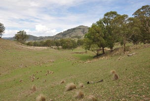 ". ""South Towarri"", Kars Springs Rd, Scone, NSW 2337"