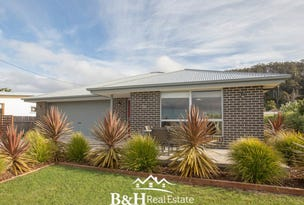 382 Preservation Drive, Sulphur Creek, Tas 7316