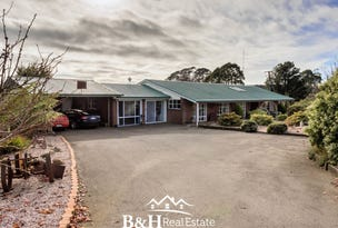 953 Ridgley Highway, Ridgley, Tas 7321