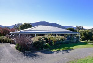 45 Dalry Road, Don Valley, Vic 3139