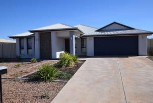 3 McMullen Court, Stirling North, SA 5710