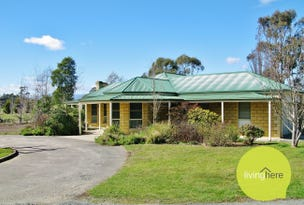 10 Neptune Drive, Blackstone Heights, Tas 7250