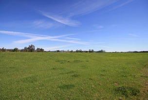 2718 Jerrys Plains Road, Jerrys Plains, NSW 2330