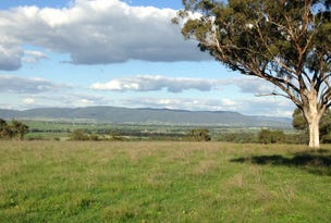 Lot 323 Bunnan Road, Scone, NSW 2337