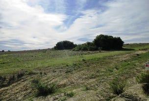 236 Ficus Rise, Lancelin, WA 6044