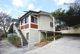 21B Netting Street, Sunnybank Hills, Qld 4109