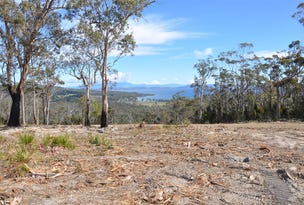 00 Heathy Hill Drive, Saltwater River, Tas 7186