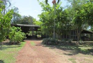 545 Litchfield Park Road, Finniss Valley, NT 0822