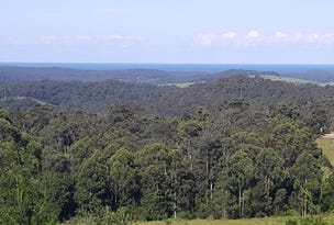 Lot 24 Pointer Road, Yatte Yattah, NSW 2539