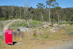 Lot 9, Lot 19 Forest Heights Drive, Tugrah, Tas 7310