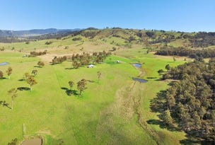 603 Snakes Valley Road, Tenterfield, NSW 2372