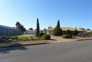 19 Collins Street, Jamestown, SA 5491