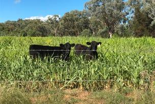 "Part ""Arcadia"", Bellata, NSW 2397"