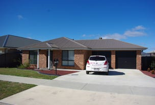 20 HUNTER ST, Goulburn, NSW 2580