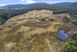 Lot 1, Cloudy Bay Road, South Bruny, Tas 7150