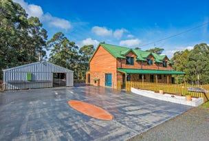 117 Purtons Road, North Motton, Tas 7315