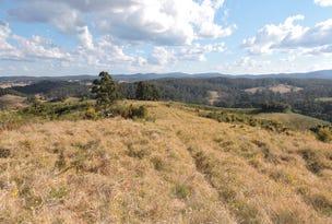 Lot 29 Tilbaroo Road, Elands, NSW 2429