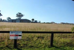 10 Jackaroo Way, Muswellbrook, NSW 2333