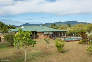 61 O'CONNOR Drive, Eubenangee, Qld 4860