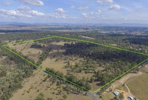 Lot 255 Pioneer Road, Singleton, NSW 2330