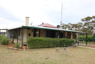 395 Mackintosh Road, Cadell, SA 5321