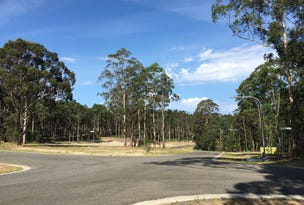 Lot 220, 19 Tallimba Road, Bangalee, NSW 2541