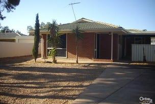 62 Butler Crescent, Port Augusta West, SA 5700