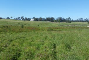 Lot 31 DP1220729 Williams River Close, Clarence Town, NSW 2321