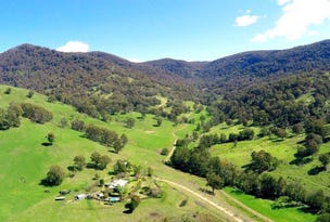 """870 Pages River Rd, """"West Creswell"""", Murrurundi, NSW 2338"""