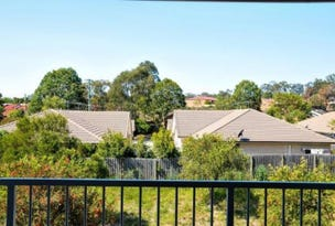 45 Blaxland Crescent, Redbank Plains, Qld 4301