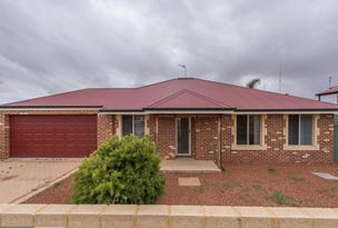 31 (Lot 341) Habgood Street, Northam, WA 6401
