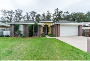 11 Waverley Park Close, Oxenford, Qld 4210