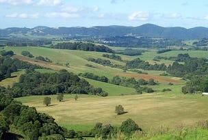 578 Shepherds Road, Dorrigo, NSW 2453