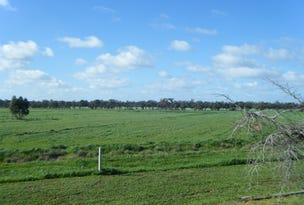 50 Crump Lane, Mathoura, NSW 2710