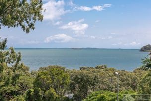 54 Beachcrest Road, Wellington Point, Qld 4160