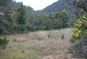 00 Gordon River Road, National Park, Tas 7140