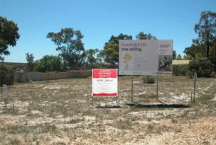 Lot 41 Dodd Street, Badgingarra, WA 6521