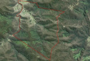Lots 1,2, 11 & 13, Boundary Creek (Forest) Road, Nymboida, NSW 2460
