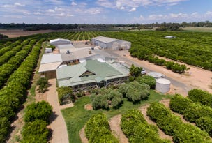 2265 Silver City Highway, Curlwaa, NSW 2648