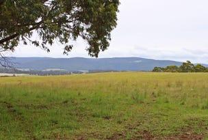 101 Middle Spur Road, Tumbarumba, NSW 2653