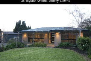 28 Illyarrie Ave, Surrey Downs, SA 5126