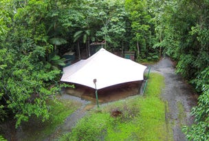 157 Cape Tribulation Road DIWAN, Daintree, Qld 4873