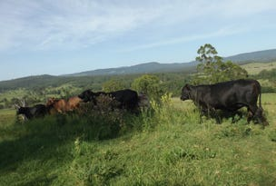 2914 Sextonville Rd, Woolners Arm, NSW 2470