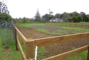 # New Cascade Rd land, Norfolk Island, NSW 2899