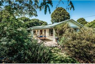 4799 Waterfall Way, Dorrigo, NSW 2453