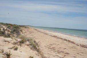 Lot 52 Flinders Highway Perlubie, Streaky Bay, SA 5680