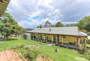 685 Reids Road, Rollands Plains, NSW 2441
