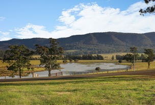 Stage 2B Rosehill Estate, Millfield, NSW 2325