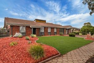 14 Hutchinson Drive, Parafield Gardens, SA 5107